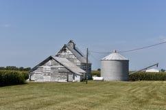 家庭玉米农场 免版税库存图片