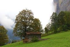 家庭瑞士 库存照片
