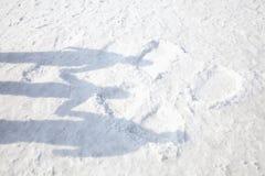家庭的阴影在雪的 库存照片
