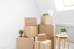 家庭移动新向 财产在纸板箱、书和绿色植物中罐的在灰色地板上站立反对 库存图片