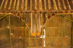 家庭竹子和烘干泰国叶子的屋顶 免版税库存图片