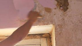 家庭维修服务 男性手剥落从墙壁的桃红色老墙纸有特别小铲的 影视素材