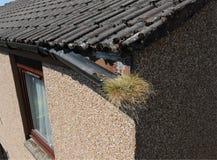家庭维护房屋修复残破的天沟流失损伤 图库摄影