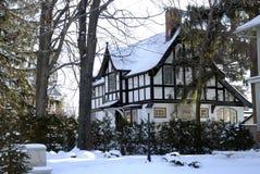 家庭美好的冬天 免版税库存照片