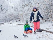 家庭获得与雪撬的乐趣在冬天公园 免版税库存图片