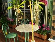 家庭菜园装饰想法 库存图片