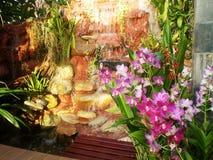 家庭菜园装饰想法 免版税图库摄影