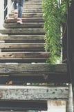 家庭葡萄酒样式木楼梯  库存图片