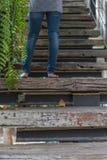 家庭葡萄酒样式木楼梯  库存照片