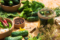 家庭装于罐中的一个集合 黄瓜腌制 海湾小豆蔻大蒜草本叶子胡椒迷迭香盐加香料香草 库存图片