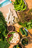 家庭装于罐中的一个集合 黄瓜腌制 海湾小豆蔻大蒜草本叶子胡椒迷迭香盐加香料香草 库存照片