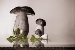 家庭观念-新鲜的健康母亲和孩子蘑菇等概率圆porcini牛肝菌蕈类可食用牛至草本和大蒜 免版税库存照片