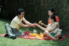 家庭野餐 免版税库存图片