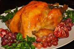 家煮熟的感恩火鸡被烤对完美 库存图片