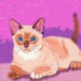 家猫例证 库存图片
