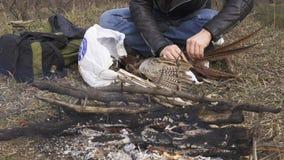 家畜准备,寻找题材 人的手拔出羽毛五颜六色的野鸡家畜在篝火附近 采a 影视素材