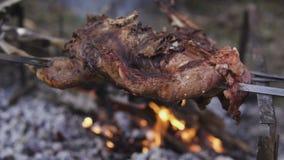 家畜准备,寻找题材 烹调在铁的一个整个野鸡身体串起在与灼烧的煤炭的一个营火和 股票录像