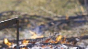 家畜准备,寻找题材 烹调在铁的一个整个野鸡身体串起在与灼烧的煤炭的一个营火和 影视素材