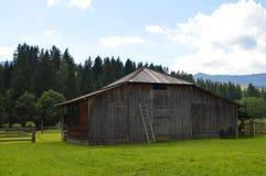 家畜的喀尔巴阡山脉的老谷仓 免版税库存照片