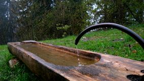 家畜的水碗在山 股票视频