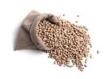 家畜的饲料 一个袋子 被粉碎的大粒子 库存照片