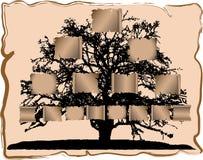家系树 库存例证