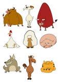家养的动画片动物 免版税库存图片