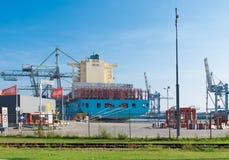 容器格但斯克波兰端口船 免版税图库摄影