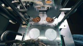 容器用移动在自动化的线的干面包在食物工厂 股票录像