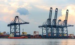 容器货物有运转的起重机桥梁的货物船在黄昏的造船厂 免版税库存图片