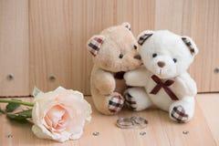 容忍在爱的夫妇熊提议允诺圆环 库存图片