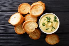 容易的开胃菜crostini和乳酪调味料特写镜头 水平 免版税库存照片