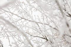 容易的背景编辑图象本质导航冬天 库存照片