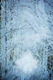 容易的背景编辑图象本质导航冬天 33c 1月横向俄国温度ural冬天 复制 免版税库存图片