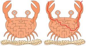 容易的螃蟹迷宫 库存照片