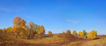 宽在小山的秋天全景横向 库存照片