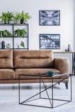 宽敞客厅垂直的看法有舒适的皮革长椅、咖啡桌和工业海报的 图库摄影