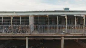宽敞灰色鸡舍上面绵羊和羊羔的畜栏修建了  股票视频