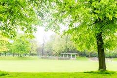 宽敞的自然公园 免版税库存图片