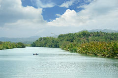 宽流热带的远景 免版税库存图片