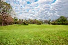 宽草坪在公园 库存照片