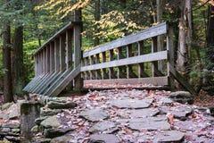 宾夕法尼亚里基茨幽谷国家公园风景 免版税库存照片