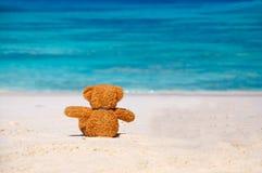 寂寞玩具熊坐海滩。 免版税库存图片