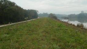 寄生虫在一个有雾的秋天早晨射击了移动沿与一个附近的反射性湖的象草的小山, 股票视频