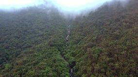 寄生虫在与河的林业峡谷上上升在有雾的天 影视素材