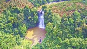 寄生虫在绿色高地wth山河和瀑布上转过来 影视素材
