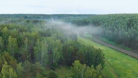 寄生虫射击了在森林和河谷的早晨雾 股票录像