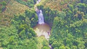 寄生虫显示密林围拢的遥远的瀑布 影视素材