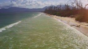寄生虫移动接近沿沙子海滩的天蓝色的海浪海浪 股票录像
