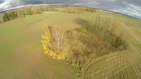 寄生虫飞行在农田在秋天调遣 影视素材